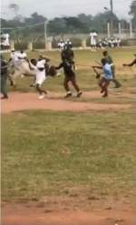 Cow stirs up commotion on NYSC parade ground, corpers run for their lives (Video)